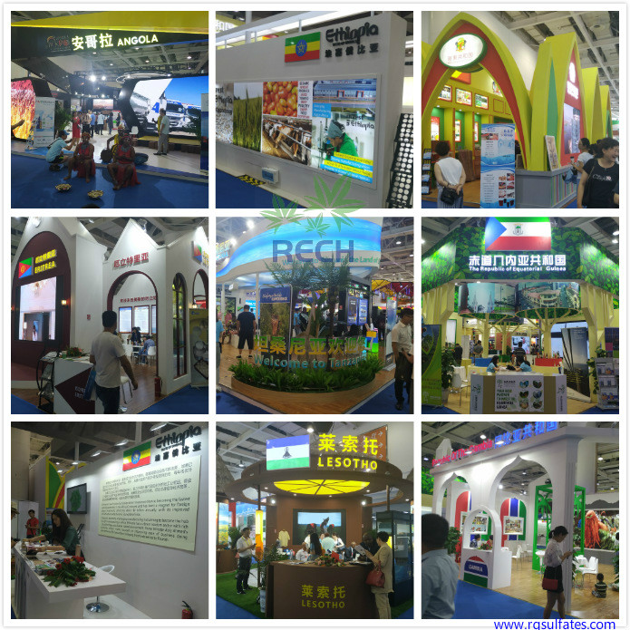 China-Africa Economic and Trade Expo2